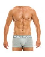 Боксеры Modus Vivendi 02921_GREY